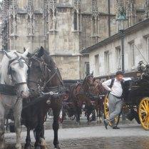 Vienna, 5 Aug