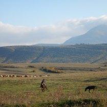 His kids herding on horseback, 11 Oct 14