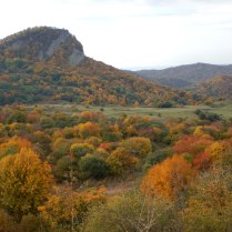 Gombori Pass, 16 Oct 14