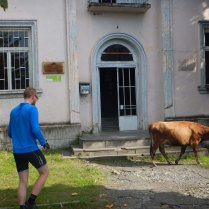 DSCN4402 Post Office with guard cow on border, 17 Oct 14