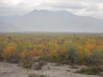 Misty mountains, 19 Oct 14