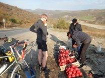 Pomengranates by the road, 21 Oct 14