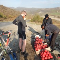 Pomengranates by the road, 21 Oct 14