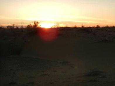 Desert sunset, 11 Nov 14