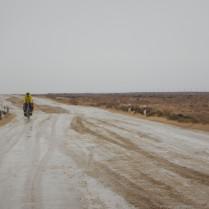 Rain in the desert, 2 Nov 14