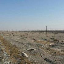 Day 4 in the Taklamakan desert, 8 Jan 15