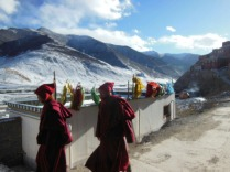 Xiewu, on the Tibetan plateau, 2 Feb 15