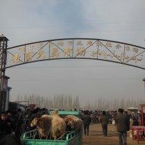 The livestock market, Kashgar, 4 Jan 15