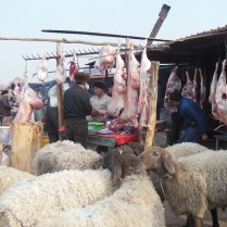 A grisly fate, Kashgar, 4 Jan 15