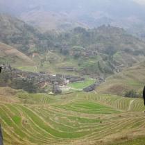 Longji terraces, 9 March 15