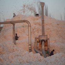 Cotton factory, 8 Jan 15