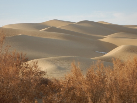 So many dunes, 12 Jan 15