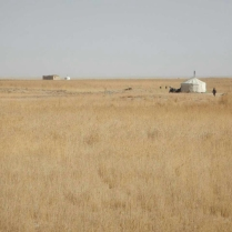 Nomads on the plateau, Jan 2015