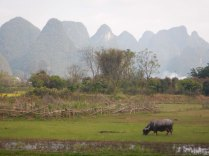 Yangshuo, 12 March 15
