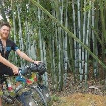 Bamboo! 20 Mar 15