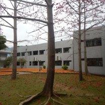 Oasis of calm, Yinghao, 22 Mar 15